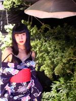 420 Girl - Aya